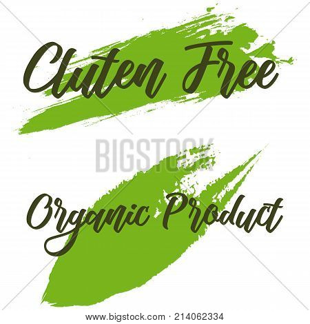 Set of ECO friendly green Set of green labels and badges with leaves for eco friendly products Set of ECO friendly green