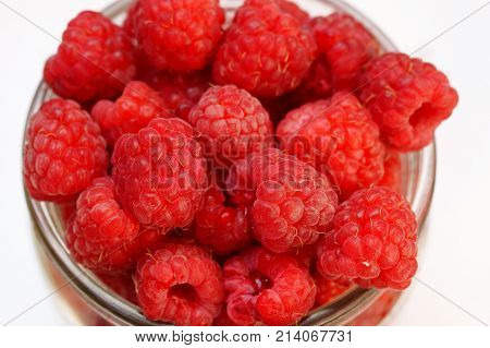 Raspberry basket / raspberry bush branch / growing raspberries