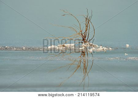 Fragments of salt lake. A salt lake or saline lake is a landlocked body of water that has a concentration of salts and other dissolved minerals significantly higher than most lakes.
