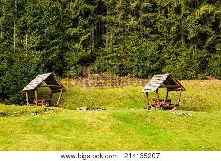 Camping Place On A Glade In Forest