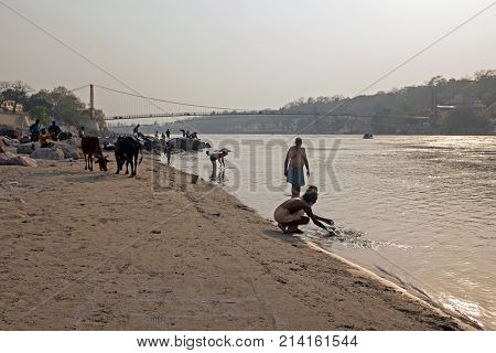 RAM JHULA, INDIA - APRIL 17, 2017: Sadhu washing his clothes in the river Ganges in India at sunset