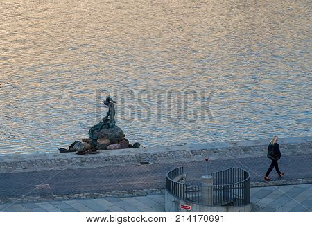 COPENHAGEN, DENMARK - SEPTEMBER 18: Genetically modified Little Mermaid on September 18, 2017 in Copenhagen. The sculptures are by Bjorn Norgaard