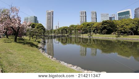 Tokyo, Japan -April 20, 2017:Hamarikyu Gardens is a large landscape garden in Tokyo, Chuo district, Sumida River, Japan. Oriental japanese garden. The Hama Rikyu is in contrast to the skyscrapers.