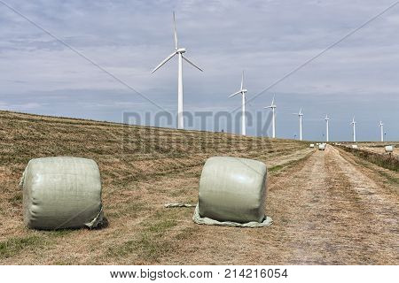 Hay bales packed in plastic wrap at Dutch dike with wind turbine farm at the background