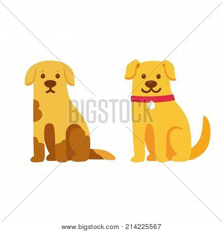 Skinny and dirty stray dog happy and healthy rescue pet. Before and after adoption cute cartoon drawing. Adopt a pet concept. Vector illustration.