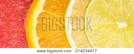 Abstract background with motley citrus-fruit slices close-up background