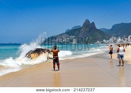 Washed Ashore Decomposing Whale in Ipanema Beach in Rio de Janeiro