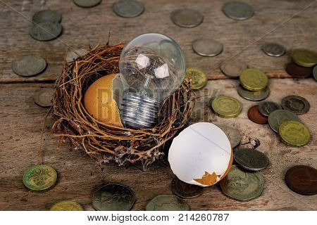 Scattered Coins with Wood Alphabets and Eggshell for Banking and Financial Concept