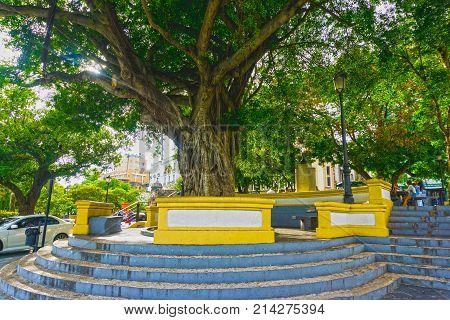 San Juan, Puerto Rico - May 08, 2016: The old tree old San Juan. Colonial architecture in San Juan, Puerto Rico