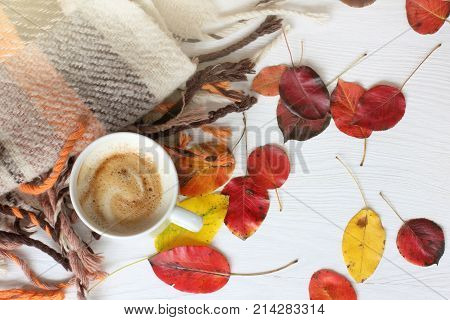 flat lay with white cup frothy cappuccino leaves and warm blanket top view / warming atmosphere of autumn days