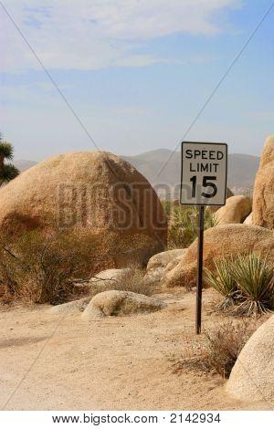 Joshua Tree Speed Limit