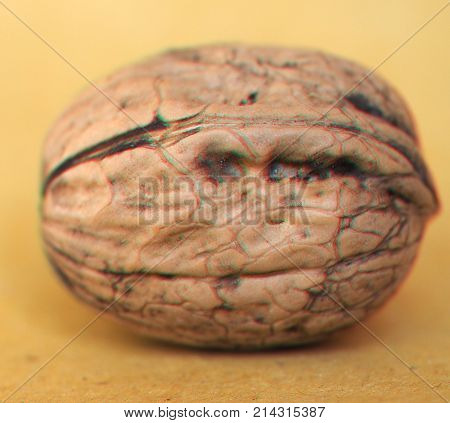 Anaglyph 3D Image Of Walnut Food