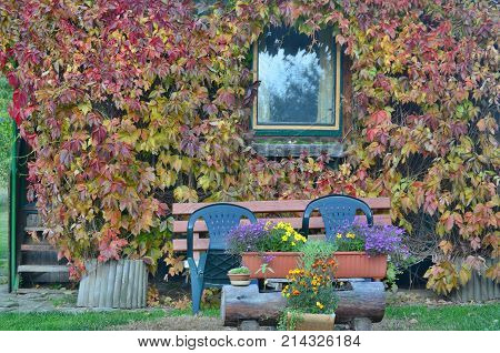 autumn in the garden southern Bohemia Czech Republic
