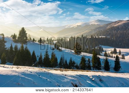 Forested Hills Of Mountain Ridge In Winter