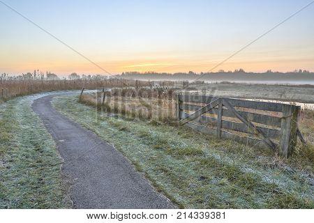 Misty Agricultural Polder Landscape