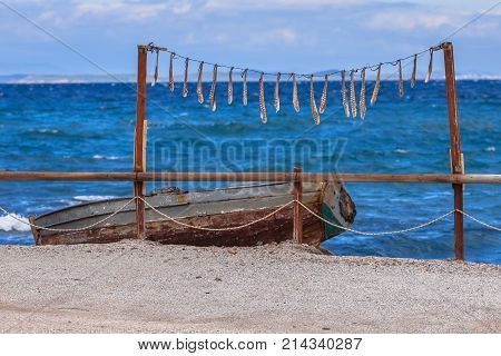 Drying Squid At Blue Aegean Sea In Greece