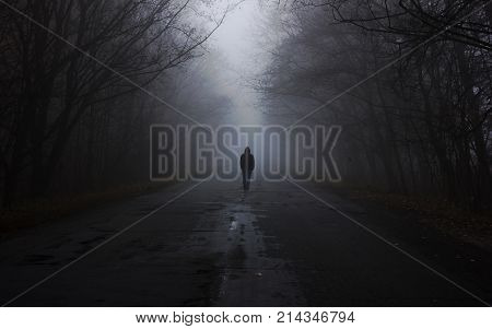 Forest in fog. the man is walking by the fog. Dark foggy forest with magic atmosphere