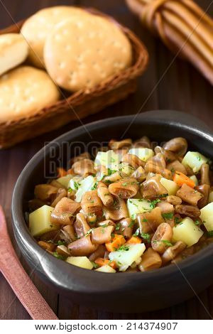 Traditional Chilean Estofado or Guiso de Cochayuyo (lat. Durvillaea antarctica) a vegan stew of bull kelp potato carrot and onion served with parsley in rustic bowl photographed with natural light (Selective Focus Focus in the middle of the stew)
