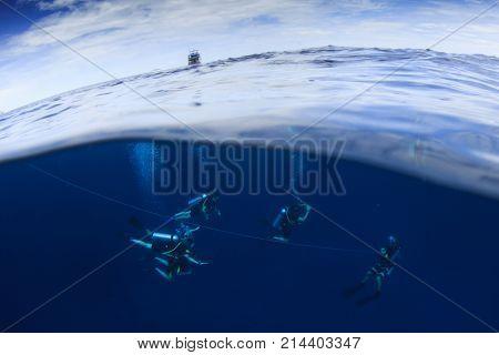 Over under split image of scuba divers in ocean