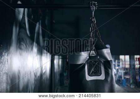 Punching bag for training in gym