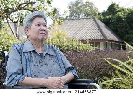 Elder Woman In Wheelchair Resting In Garden. Elderly Female Relaxing In Park. Senior Leisure Lifesty