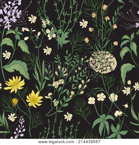 Elegant floral seamless pattern with gorgeous hand drawn wild flowers, tender flowering herbs and herbaceous plants on black background. Botanical vector illustration in beautiful antique style