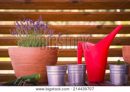 Gardening tools and flowers pots on the terrace balcony in the garden