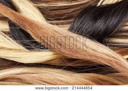 Real woman hair texture. Human hair weft, Dry hair with silky volumes. Real european human hair wallpaper texture. Brown blond dark blonde and black. Photo.