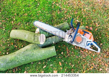 Chain saw with tree trunk or branch on green grass