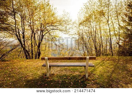 Empty Park Bench In Mountain Forest With Idyllic Golden View.