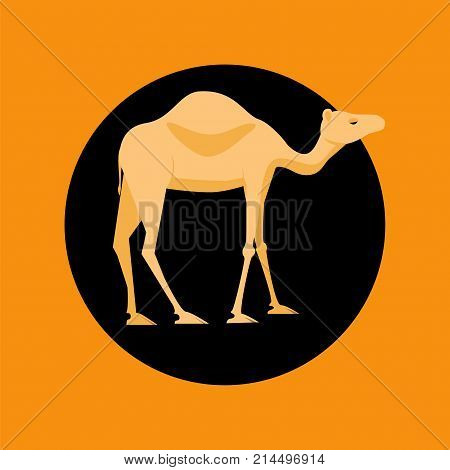 Camel Colorful Icon