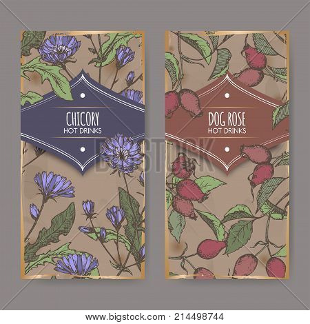 Two color labels with Cichorium intybus aka common chicory and Rosa canina aka dog rose sketches. Hot drinks collection. Great for cafe, bars, tea ads.