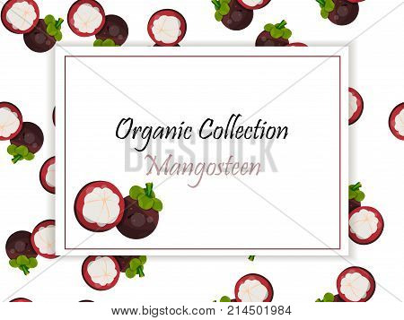 Vintage fruit poster design with fresh and juicy mangosteen. fruit symbol for jam and juice product label or grocery store, shop and farm market design. Vector square label, mangosteen jam, sauce or juice label
