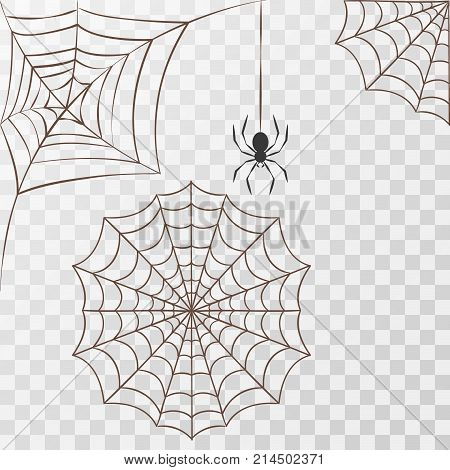 Cobweb set spider web halloween black vector insect design spiderweb horror danger trap scary silhouette arachnid illustration. Spooky fear thread animal line creepy hanging netting