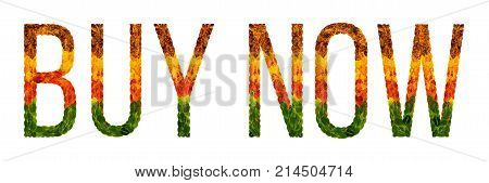 Buy now word is written with leaves white isolated background, banner for printing, creative illustration buy now colored leaves.