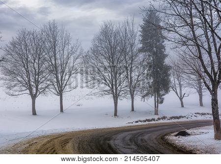 Road Through The Foggy Winter Forest