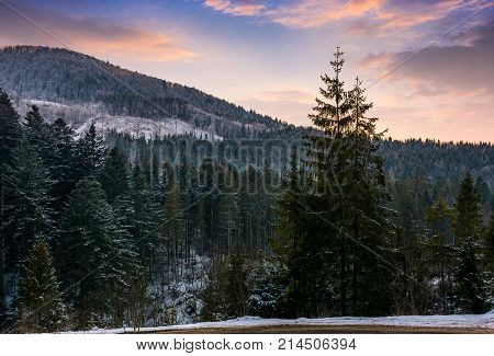 Forested Mountain At Winter Sunset