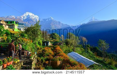 Himalaya Mountains, View From Ghandruk, Nepal