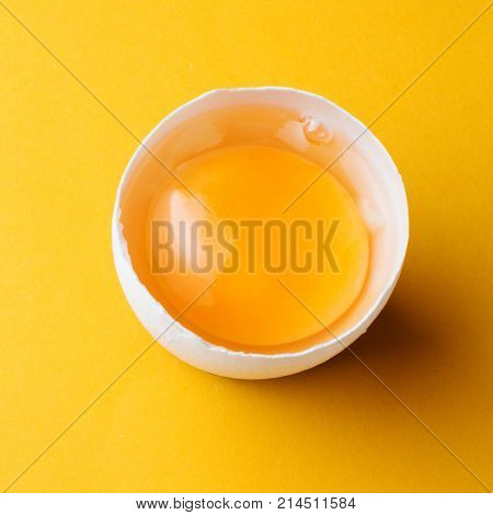 White Egg And Egg Yolk On The Yellow Background. Square