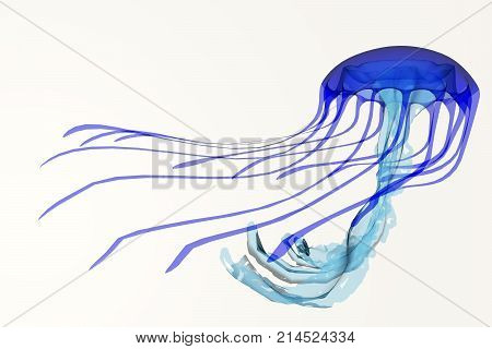 Blue Jellyfish 3d illustration - A jellyfish is a soft body free-swimming aquatic animal with poisonous stinging tentacles to catch its food.