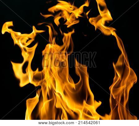 fire flames on a black background . Photo of an abstract texture