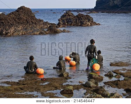 jeju south korea - 3rd november 2017: haenyeo traditional female fishing divers of jeju island. they considered a national treasure. The majority of the divers are above 50 years old with the oldest being 80.