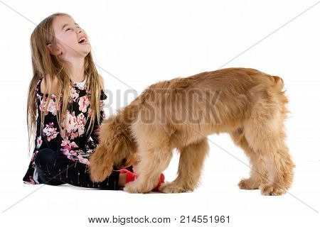 Cute Girl Laughing While Playing With Her Dog