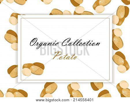 Potatoes retro label design with farm fresh organic potato . Promotional vector poster concept for agricultural industry or grocery store. Symbol for sauce product label