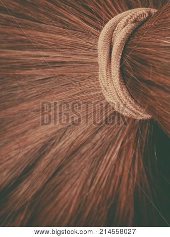 Detailed Closeup Of Brown Hair In Ponytail