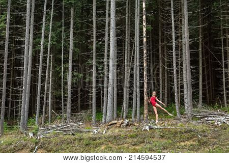Pretty ballerina posing near the dry pine on the background of the coniferous forest. She wears a red leotard and ballet shoes. Girl holds her hand on the pine and stretches left leg to the side.
