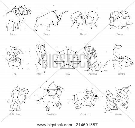 Horoscope, all Zodiac animals in constellation forms with line and stars on white background. Collection of zodiac signs, thirteen of black elements, stars and constellations set. Zodiac animals constellation