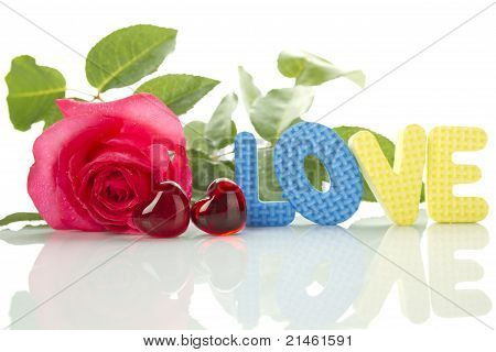 """Red Rose And The Text Of """"love"""""""