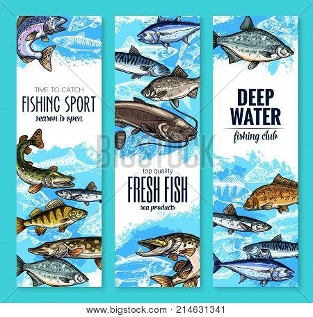 Fresh fish banner set for seafood product or fishing club flyer template. Sea and river fish sketches of salmon, tuna, trout, perch, pike, carp, mackerel, catfish, herring and sprat vector design