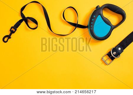 Black leather dog collar and blue leash attached on yellow background. Top view. Still life. Copy space. Flat lay